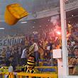 высшая лига Бельгия, высшая лига Турция, высшая лига Австралия, высшая лига Греция, высшая лига Кипр
