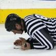 судьи, НХЛ, Пэт Дапуццо