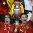 Евро-2008, Луис Арагонес, Висенте Дель Боске, сборная Испании