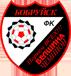 Эмблема клуба Белшина (Бобруйск)